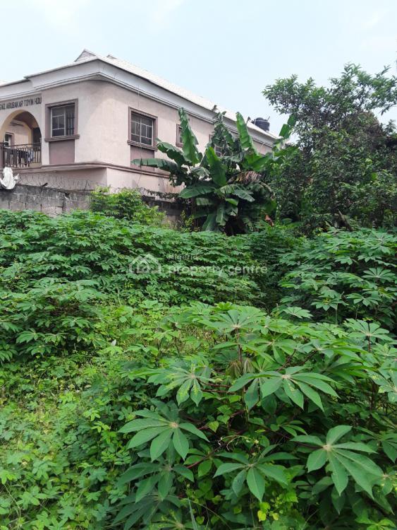 a Full Plot of Land, Akesan, Alimosho, Lagos, Land for Sale