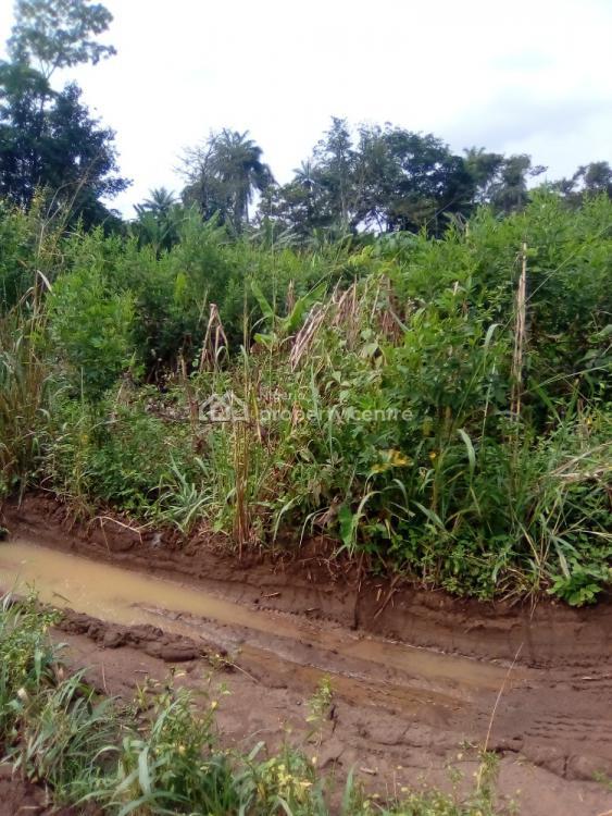 60 Plots of Land, No 32 Along Imafo Estate Igbatoro Akure, Akure, Ondo, Residential Land for Sale