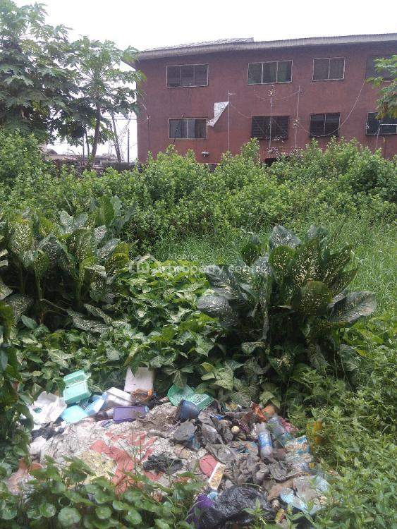 Half Plot of Dry Land, Opposite The Lords Chosen Hq, Surulere, Lagos, Commercial Land for Sale