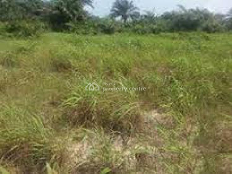 Survey and Gazette, Royal Arena Estate., Ibeju Lekki, Lagos, Residential Land for Sale