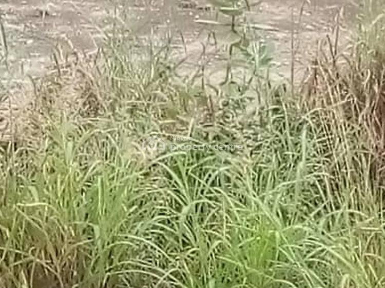 Dry Bare Land Measuring 450sqm, Pedro, Gbagada, Lagos, Residential Land for Sale