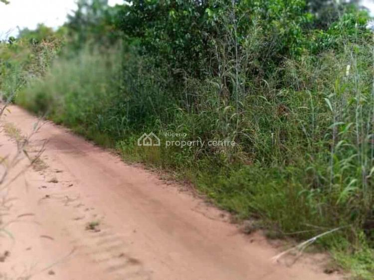 20 Plots of Land, Oforola, Close to Fecolart, Owerri, Imo, Mixed-use Land for Sale