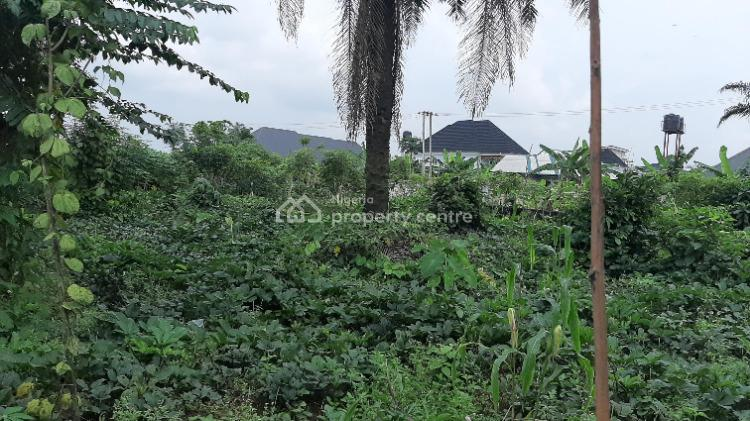 Well Located Plot of Land, Farm Road, Rumuduru, Port Harcourt, Rivers, Land for Sale