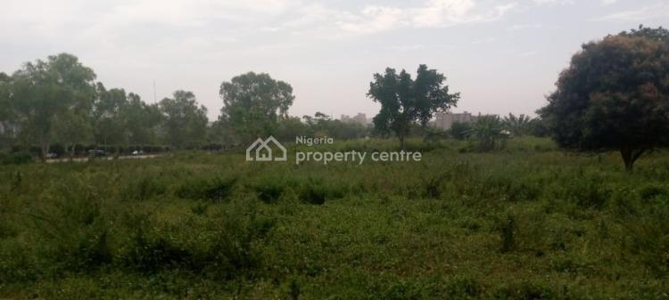 Corner Piece 1 Ha, C of O, Non Specified., Area 10, Federal Secretariat & W T C, Central Business District, Abuja, Commercial Land for Sale