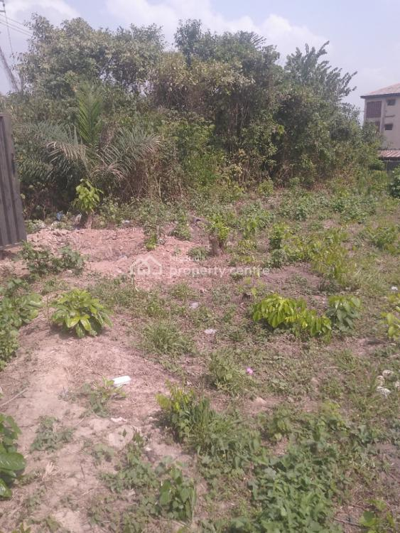 One and Half Plot of Land, Lagoon View Estate, Ibeshe, Ikorodu, Lagos, Mixed-use Land for Rent