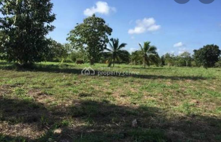 400sqm Land, G 43, Info Street, Banana Island, Ikoyi, Lagos, Land for Sale