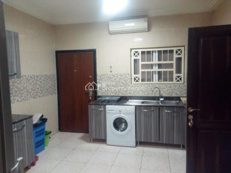 Luxury Furnished and Service 2 Bedrooms Flat, Off Ibb Boulevard, Maitama District, Abuja, Flat for Rent
