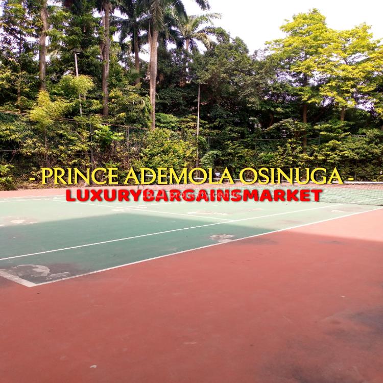 Prince Ademola Osinuga Beautiful Evergreen Family Friendly Environment, Old Ikoyi, Ikoyi, Lagos, Flat for Rent