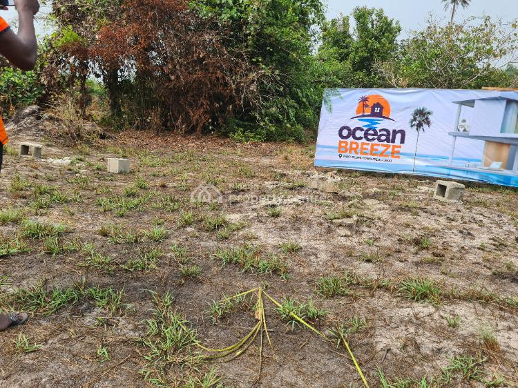 Enjoy Privacy and Nature at an Ocean View Dry Land Estate for Huge Inv, 2 Minutes Before La Campaigne Tropicana, Igbolomi Town, Ibeju Lekki, Lagos, Commercial Land for Sale