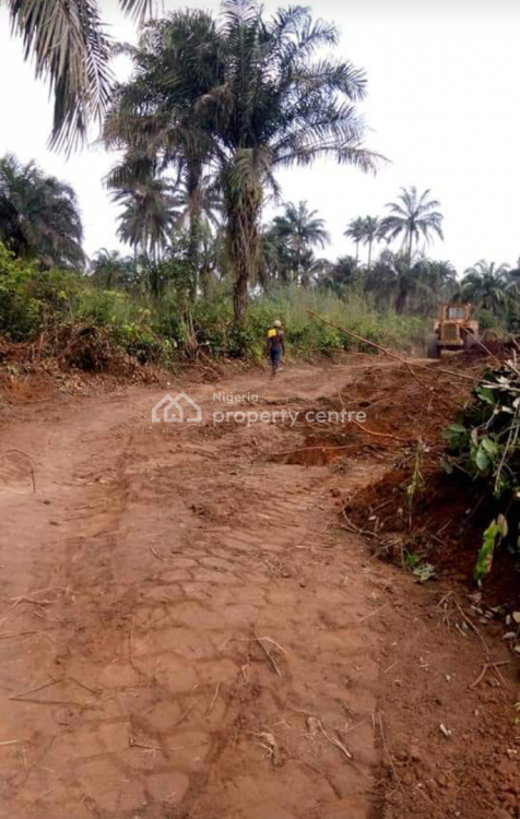 Govt. Approved Buy &  Build Estate Land in Hot Location, Ciza Gold Estate Airport Road, Owerri North, Imo, Mixed-use Land for Sale