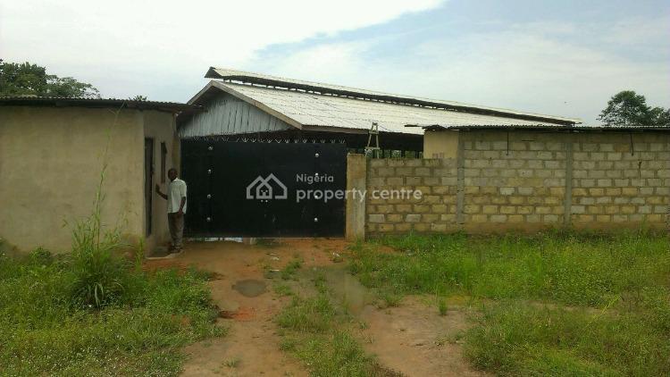 Farm Asset, Ewekoro, Sango Ota, Ogun, Commercial Land for Sale