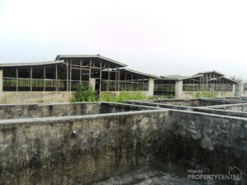 Poultry fish farm on 2 half acres oreta ikorodu for Fish farm 3