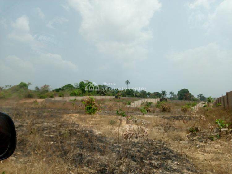 Cheap Lands in a Fast Developing Layout, Supreme Layout Amokpo Nike, Abakpa Nike, Enugu, Enugu, Land for Sale