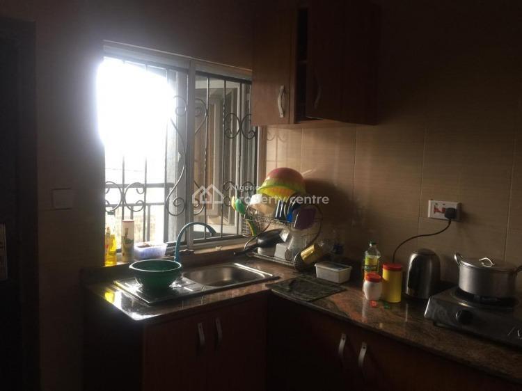 Flatmate Needed. Luxury Shared 2 Bedroom, Sangotedo, Ajah, Lagos, Flat for Rent