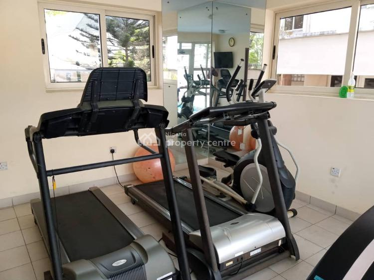 Nice and Spacious Serviced  1 Bedrooom Apartment, Copper Road, Ikoyi, Lagos, Mini Flat for Rent
