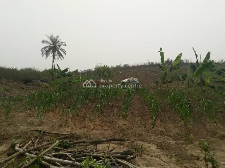 Interested in Crop Farming, Epe, Lagos, Land for Sale