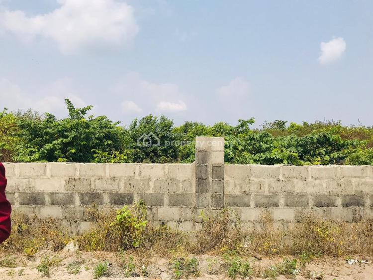 Land with C of O, Free Trade Zone, Eagles Arena, Osoroko, Ibeju Lekki, Lagos, Commercial Land for Sale