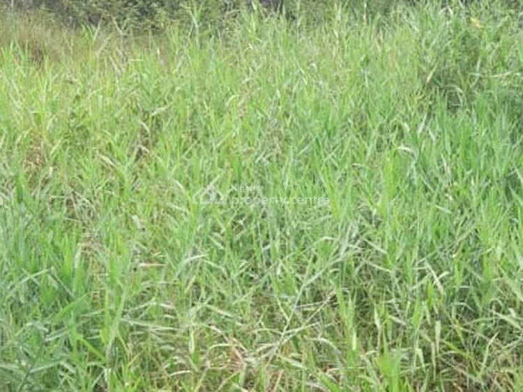Bare Land Measuring 700sqm, Osborne Phase 2, Osborne, Ikoyi, Lagos, Mixed-use Land for Sale