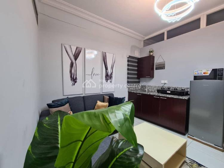Classic 1 Bedroom Apartment, Lekki Phase 1, Lekki, Lagos, Flat Short Let