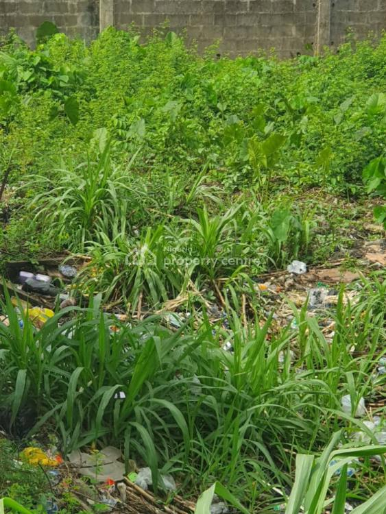 Piece of Land, Estate, Omole Phase 1, Ikeja, Lagos, Residential Land for Sale