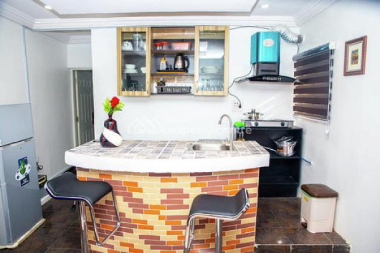 1 Bedroom Fully Furnished Mini Flat, Mekong Street, Maitama District, Abuja, Mini Flat for Rent