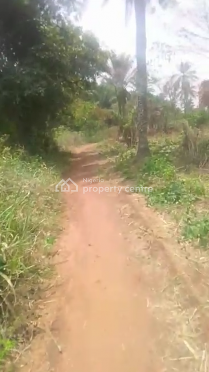Farm Land, Over 100 Acres, Laloko Village, Owode Egba, Obafemi Owode, Ogun, Commercial Land for Sale