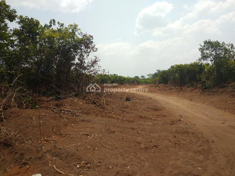 Newly Created Layout By Govt for Future Appreciation, Okuku, Owerri West, Imo, Mixed-use Land for Sale