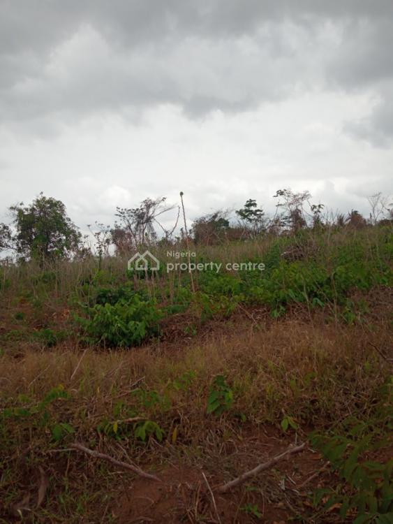 2 and Half Acres of Farm Land in a Peaceful Area, Apesin Village, Bakatari, Ilugun - Odeda Local Government, Odeda, Ogun, Commercial Land for Sale