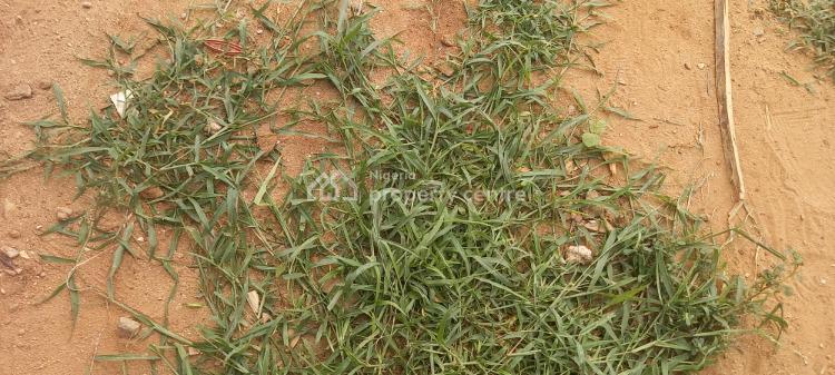 100ft By 100ft, Uroho, Behind to B.i.u., Benin, Oredo, Edo, Land for Sale