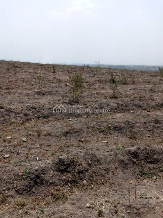 Cheap and Affordable Farmlands in Acres., Ogbaara, Ikire, Ayedire, Iwo, Osun, Mixed-use Land for Sale