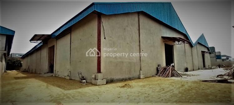 Newly Built Warehouse Capacity of 47,000 Sqft, Amuwo Odofin Industrial Area, Amuwo Odofin, Lagos, Warehouse for Rent