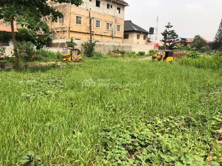 Bare Land Measuring 1,160m2, By Nike Art Gallery, Ikate, Lekki, Lagos, Residential Land for Sale