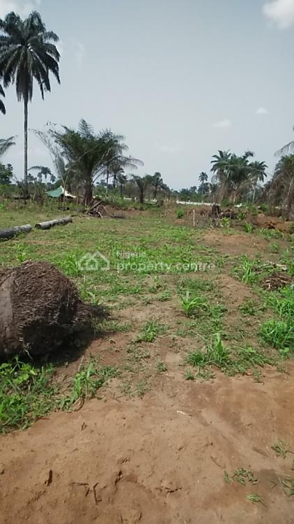 1,200sqm Plot of Land in Estate, Omagwa, Port Harcourt, Rivers, Commercial Land for Sale