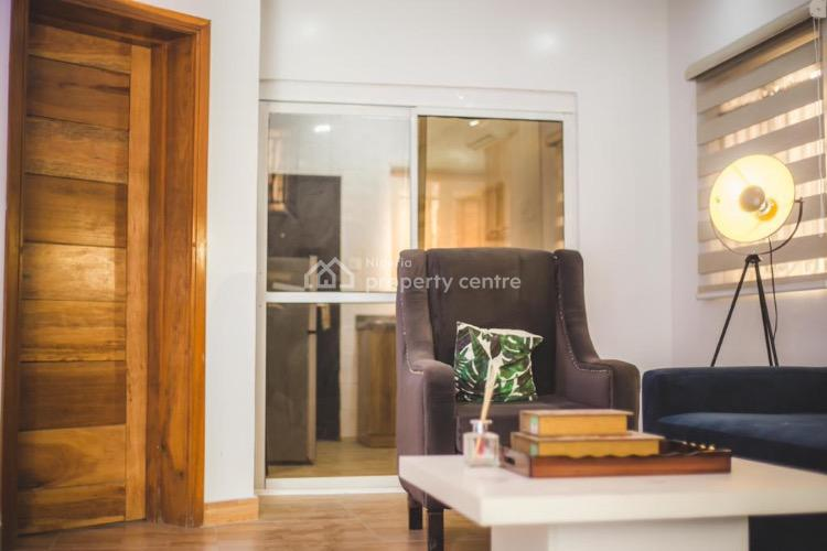 Modern 1 Bedroom Apartment, Lekki Phase 1, Lekki, Lagos, Mini Flat Short Let