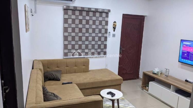 Tastefully Furnished Executive Miniflat Apartment, 22,ajayi Bembe Street, Shomolu, Lagos, Mini Flat for Rent