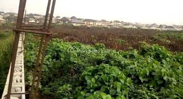 Dry Land in a Developed Area, Peter Memesi Street, Vip Gardens, Satellite Town, Ojo, Lagos, Residential Land for Sale