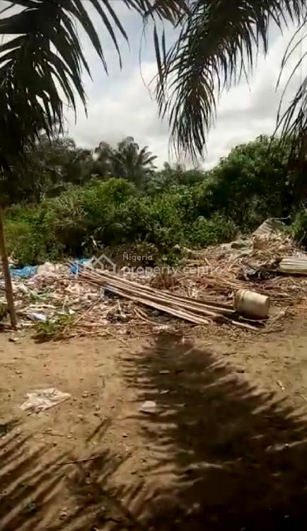 Lands Sponsorship 100 Acres, Ibeju Lekki, Lagos, Residential Land Joint Venture