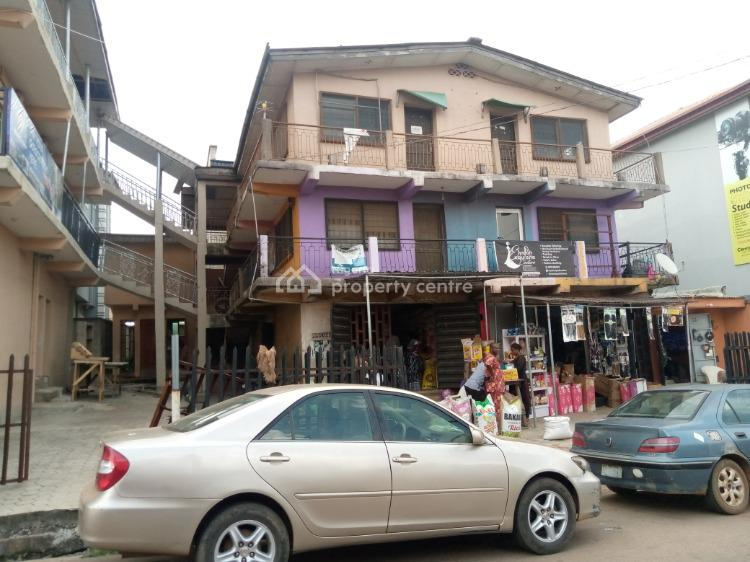 Two Bedroom Flat with Necessary Facilities, Arakale Road, Akure, Ondo, Flat / Apartment for Rent