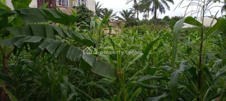 Affordable Plot of Land in a Quiet Neighborhood, Behind Tropicana Mall, Uyo, Akwa Ibom, Land for Sale