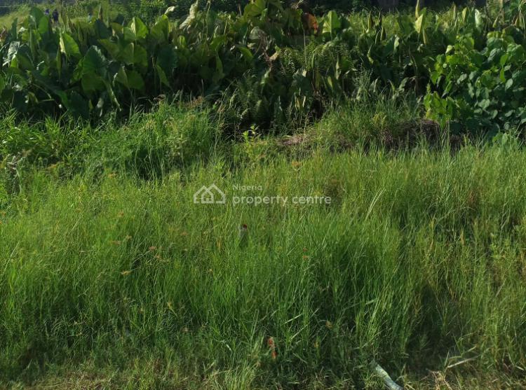 Nice and Standard Plot of Land, Developing Estate Off Shoprite Road, Sangotedo, Ajah, Lagos, Residential Land for Sale