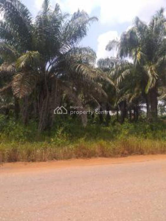 Cheap Acres of Land with Many Benefits, After Ilaro Polytechnic, Ojo, Lagos, Mixed-use Land Short Let