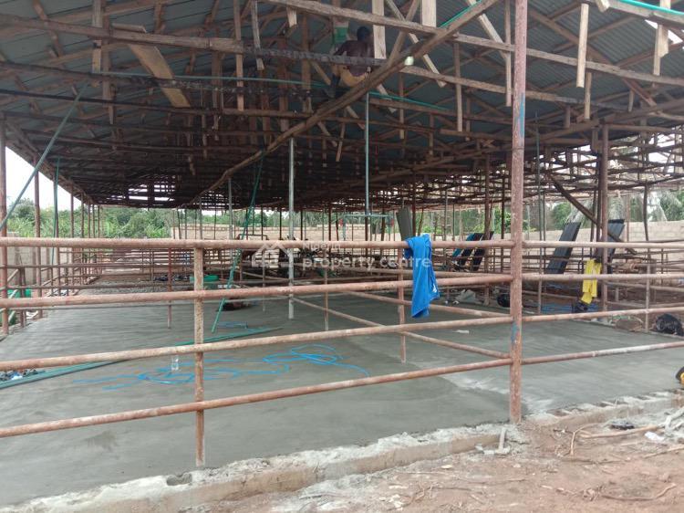 Farm Investment, Close to Ojodu Berger, Obafemi Owode, Ogun, Commercial Land for Sale