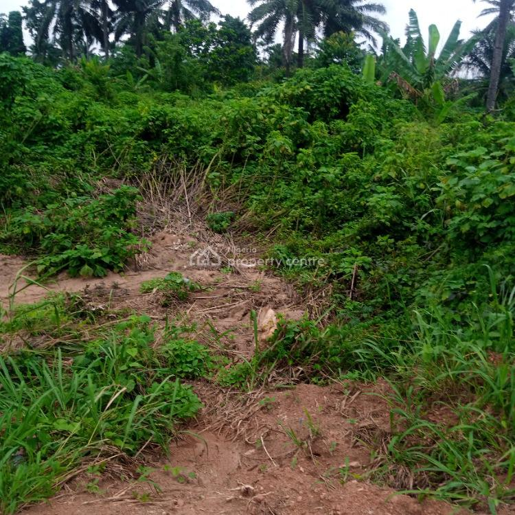 Give Away Acres & Massive Plots of Land Starting From The Tarred Road, Akure, Ondo, Mixed-use Land for Sale