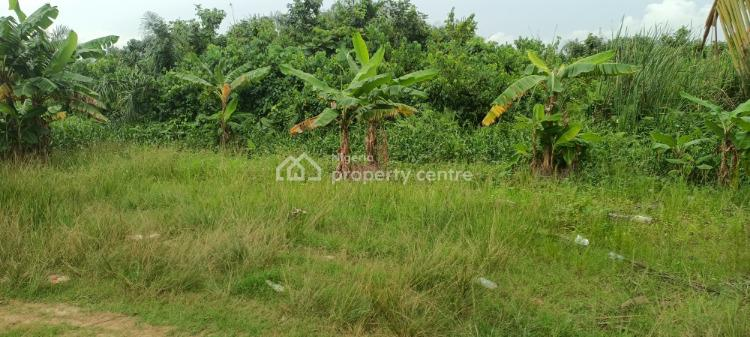 Full Plot of Land with Necessary Document, Ojokoro Newtown Estate, Agric, Ikorodu, Lagos, Mixed-use Land for Sale