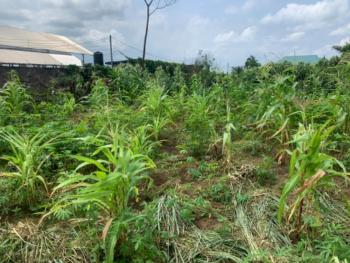 a Parcel of Land (2 Plots), Off Obirikwere - Airport Road, Near Opm Church Headquarters, Port Harcourt, Rivers, Land for Sale