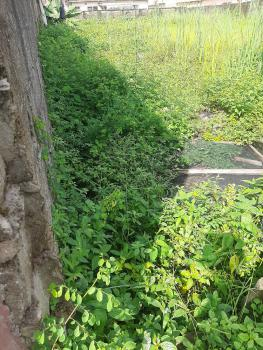 a Plot and Quarter Land with Shops, Samuel Ekunola Street, Lord Bus-stop, Ago Palace, Isolo, Lagos, Mixed-use Land for Sale
