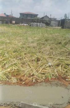 2 Plots of Land + House, Oworonshoki, Shomolu, Lagos, Residential Land for Sale