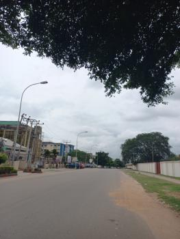 1 Hectare Commercial Land, Jabi, Abuja, Commercial Land for Sale