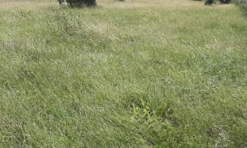 Fully Plot of Land Facing Ado Road, on Ado Road, Ajah, Lagos, Mixed-use Land for Sale