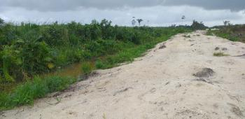 Hectares of Land with Governors Consent Suitable for Estates, Lekki Free Trade Zone, Ibeju Lekki, Lagos, Mixed-use Land for Sale
